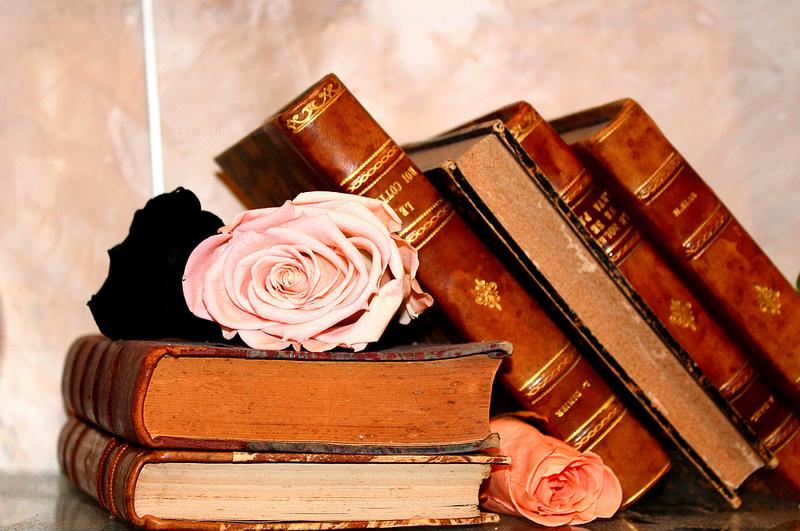 Xxvie Salon International Du Livre Ancien De L Estampe Et