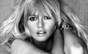 Infographie : Brigitte Bardot fête ses 80 ans le 28 septembre 2014 !